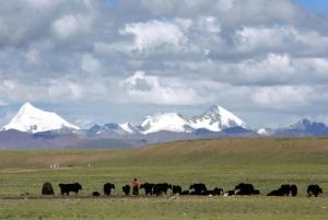 nomadi tibetani